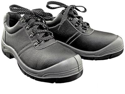 Delovni čevlji BRBO BS